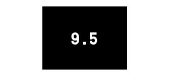 Men's Size 9.5